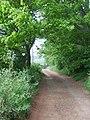 Little Iverley Covert - geograph.org.uk - 416921.jpg