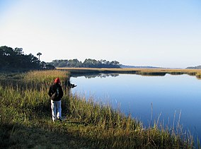 Little Talbot Island - Myrtle Creek.jpg