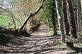 Llwybr Gogledd y Berwyn joins the bridlepath - geograph.org.uk - 1250935.jpg