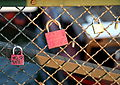Locks of love...paris (5685624243).jpg
