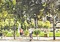 Lustgarten Berlin (122446497).jpeg