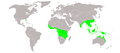 Lygodium microphylium distribution.PNG