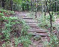 M&M trail on Gap Mountain.jpg