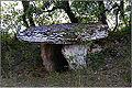 MARCILHAC-SUR-CELE (Lot) - Dolmen de la Combe de Sole (vu de trois-quart droit).JPG