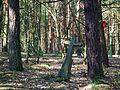 MOs810 WG 15 2016 (Pyzdry Forest II) (Anielewo, old ev. cemetery) (3).JPG