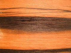 Eebenpuu musta suku puoli PIC