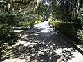 Maclay Gardens SP path05.jpg