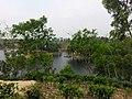 Madhobpur Lake,Moulovibazar.jpg