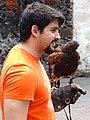 Man with Falcon - Jardin Hidalgo - Coyoacan - Mexico City - Mexico (15497115076).jpg