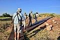 Mapungubwe, Limpopo, South Africa (20535506182).jpg