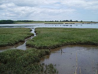 Anna of East Anglia - Marshland around Blythburgh, near where Anna met his death