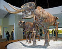 Mastodon mother & child