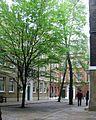 Mayfair, London, UK - panoramio (3).jpg