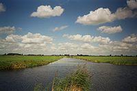 Meadows Wormer.jpg