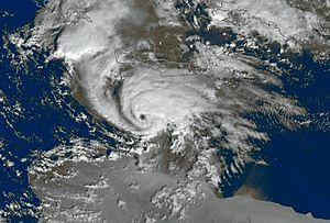 Mediterranean tropical-like cyclone - Satellite image of a tropical-like cyclone in December 2005