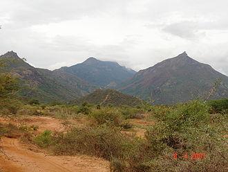 Meghamalai - Meghamalai Mountains