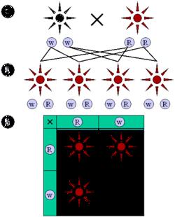 Закон единообразия гибридов первого поколения