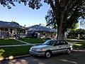 Mercury Topaz L - Flickr - dave 7.jpg