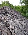 Metagraywackes (Chelmsford Formation, Paleoproterozoic, 1.74 Ga; Larchwood North outcrop, Sudbury Impact Structure, Ontario, Canada) 25 (40794930623).jpg