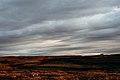 Midnight sun near Myvatn - panoramio.jpg