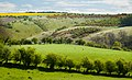 Millington IMG 1176.JPG - panoramio.jpg
