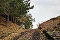 Monte Sona 2 - Etna.jpg