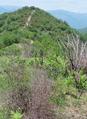 Monte mucchio di pietre da sud.png