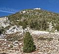 Monument Pass - Tahoe Rim Trail (2979567137).jpg
