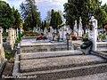 Morminte - panoramio.jpg