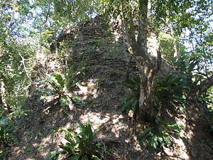 Motul de San José - Summit of the north twin temple, viewed from the saddle between the two pyramids