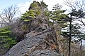 Mount Sobo, one of the 100 Famous Japanese Mountains, Japan; December 2018 (08).jpg