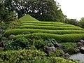 Mount in Momijiyama Garden in Sumpu Castle Park 2.JPG