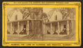 Mrs. H.B. Stowe's Place at Mandarin, on St. Johns River, from Robert N. Dennis collection of stereoscopic views.png
