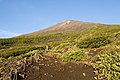 Mt.Fuji from Subashiri Trail 01.jpg