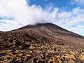 Mt. Ngauruhoe - 2013.04 - panoramio.jpg
