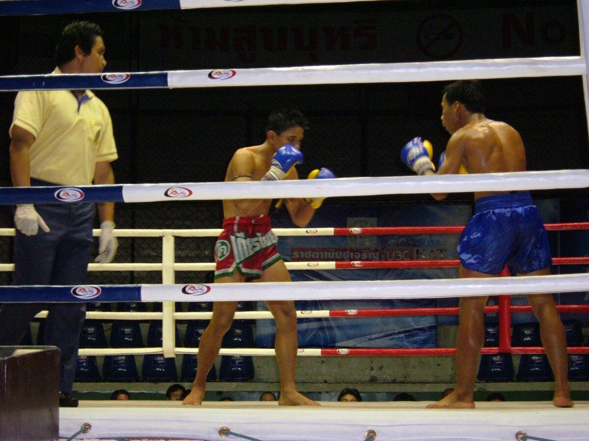 Muay thai – Wikipédia afdd3d1d53906