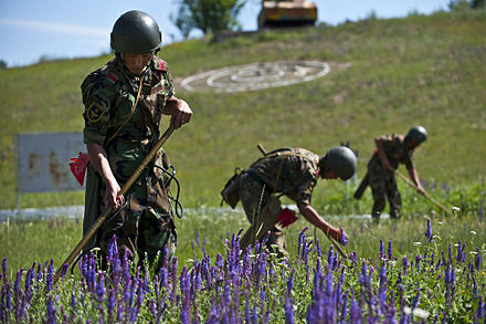 Kyrgyz soldiers conducting mine sweeping exercises. Multinational forces participate in Regional Cooperation 12 Exercise -06.JPG