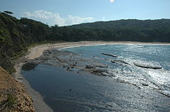 Depot Beach im Murramarang-Nationalpark