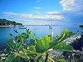 Murter, Croatia - panoramio.jpg