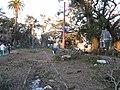 NOLATwister13Feb07CarrolltonNeutralGround2.jpg