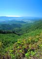 NRCSOR00085 - Oregon (5849)(NRCS Photo Gallery).tif