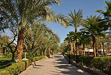 Hotels In Naama Bay Egypt