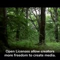 File:Natural Resources Wales video by Wikimedia UK.webm