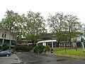 Naturdenkmal 513 OÖ - Platanengruppe a.JPG