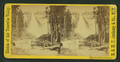 Nevada Falls, 700 ft. high, by E. & H.T. Anthony (Firm) 2.png