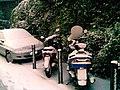 Neve a genova - panoramio - Emanuela Meme Giudic… (4).jpg
