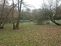New Milton, Pond Copse - geograph.org.uk - 1085490.jpg