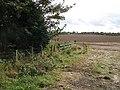 Newly sown field, East Blanerne - geograph.org.uk - 562967.jpg