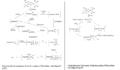 Nickel catalyzed Phenyl Polymerization mechanism.png