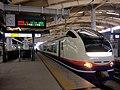 Niigata Station Kouka Zairai 5Horm E653.jpg